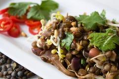 Insalata indiana della lenticchia Fotografie Stock