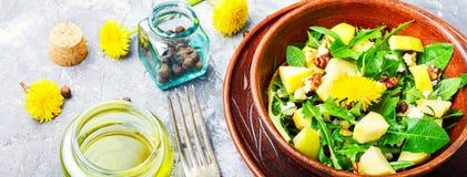 Insalata naturale di dieta Immagini Stock Libere da Diritti