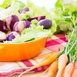 Insalata organica della barbabietola e della carota Fotografia Stock Libera da Diritti