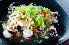 Insalata piccante tailandese del calamaro Fotografia Stock