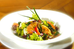 Insalata Ricca Royalty Free Stock Photography