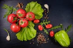 Insalata rossa del pepe e del pomodoro Fotografie Stock Libere da Diritti