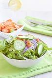 Insalata sana con il pomodoro, la cipolla, il cetriolo e la lattuga Fotografia Stock Libera da Diritti