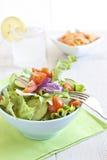 Insalata sana con il pomodoro, la cipolla, il cetriolo e la lattuga Fotografie Stock