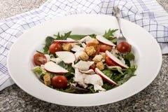 Insalata sana con il pomodoro, il ravanello ed i crostini Immagine Stock