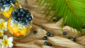 Insalata tropicale variopinta della miscela in barattolo Vario genere fresco di bacca e di frutta organiche crude in ciotola di v archivi video