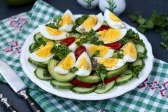 Insalata utile dell'avocado, dei cetrioli, delle uova e del peperone dolce situati in un piatto contro un fondo scuro fotografia stock libera da diritti