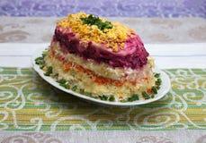 Insalata variopinta con l'aringa e le verdure sul piatto Fotografia Stock Libera da Diritti