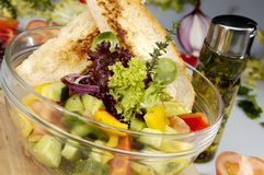 Insalata Vegetariana Royalty Free Stock Photography