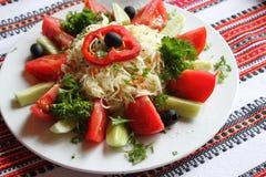 insalata vegetariana immagine stock libera da diritti