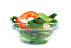 Insalata vegetariana Immagine Stock