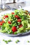 Insalata verde Fotografia Stock