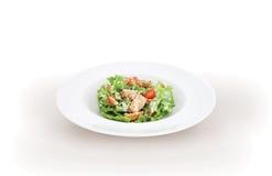 Insalata verde con carne di pollo Fotografia Stock