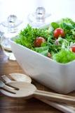 Insalata verde con i pomodori Fotografie Stock