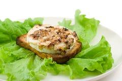 Insalata verde con il formaggio ed il pane tostato di capra Fotografia Stock