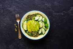 Insalata verde del vegano immagini stock