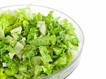 Insalata verde fresca Immagini Stock