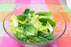 Insalata verde fresca Fotografia Stock