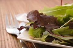 Insalata verde fresca Fotografie Stock