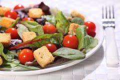 Insalata verde sana con i crostini ed i pomodori Fotografie Stock Libere da Diritti