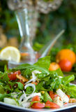 Insalata verde sana sulla tabella Fotografia Stock Libera da Diritti