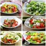 Insalate del menu del collage con le verdure, formaggio Immagine Stock