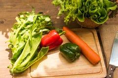 Insalate di verdure della primavera fotografie stock libere da diritti