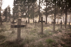 Insane Cemetery Background Stock Photography