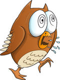 Insane Crazy Owl Royalty Free Stock Photos