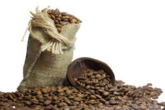 Insatiable taste of coffee to start the day Stock Photos