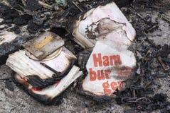 Inscatola l'hamburger Fotografia Stock