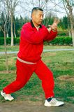 Inscatolamento di Taiji del gioco dell'uomo anziano Fotografie Stock