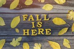 Inscrição amarela A queda está aqui em letras de madeira Quadro do yel fotografia de stock royalty free