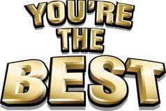 inscrição brilhante do ouro engraçado do vetor 3d você é o melhor Imagem de Stock