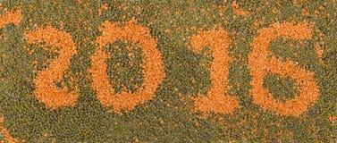 inscrição 2016 das lentilhas Imagens de Stock
