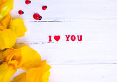 Inscrição eu te amo e íris amarelas Imagem de Stock Royalty Free