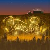Inscrição na perspectiva do trigo ilustração royalty free