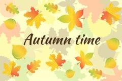 Inscripción Autumn Time y un collage de las hojas de otoño Fotos de archivo