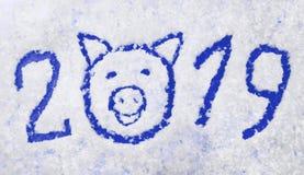 Inscripción azul 2019 del ` s del Año Nuevo con símbolo del cerdo en fondo nevoso Fotografía de archivo
