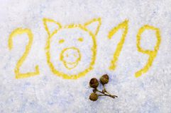 Inscripción 2019 del ` s del Año Nuevo con el símbolo de un cerdo y de bellotas en un fondo nevoso Fotografía de archivo libre de regalías