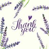 Inscriprion Dziękuje ciebie z akwareli lawendowymi gałąź, ilustracja ilustracji