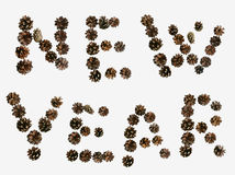 Inscription. New year laid out by pine cones Stock Images