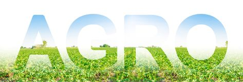 The inscription Agro on the background of a potato plantation field. Agribusiness and agro-industry. The use of innovative technologies, equipment and royalty free stock photography