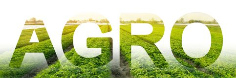 The inscription Agro on the background of a potato plantation field. agro-industry. integrated solutions to increase productivity. And reduce costs. equipment stock images