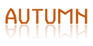 Inscription Autumn from the autumn leaves Royalty Free Stock Photography