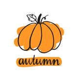 Inscription autumn with pumpkin. The inscription  hand-drawing of black ink on a white background. Vector Image. It can be used for a site, article, invitation Royalty Free Stock Photography