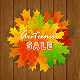 Inscription Autumn sale and maple leaf on wooden background Stock Image