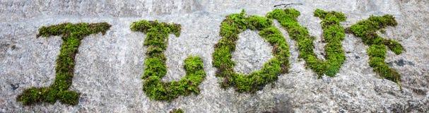 Inscription avec de la mousse sur la pierre image stock