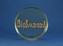 Inscription de mot de Biohazard par les bactéries vivantes sur la boîte de Pétri Images libres de droits