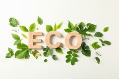 Inscription eco and greenery on light background, space for text. Environmental protection. Agriculture royalty free stock image